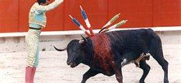 Cómo son las corridas de toros