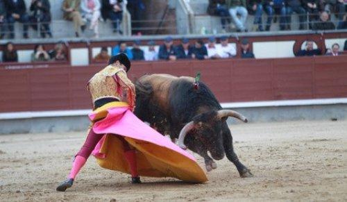 Prohibir los toros no compensa